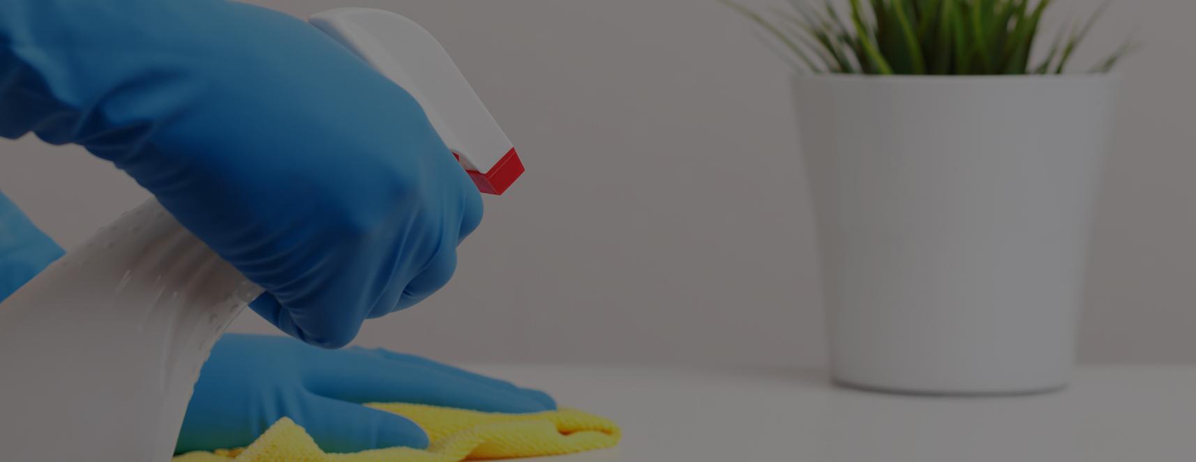 Commercial Sanitization Services